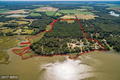 Barclay, Centreville, Chester, Chestertown, Church Hill, Crumpton, Grasonville, Henderson, Ingleside, Marydel, Millington, Price, Queen Anne, Queenstown, Stevensville, Sudlersville, Wye Mills Commercial For Sale: 500 Double Creek Point Road