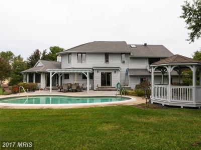 Stevensville Single Family Home For Sale: 103 Teal Court