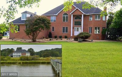Stevensville Single Family Home For Sale: 200 Fantasy Lane
