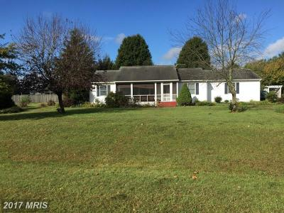 Centreville Single Family Home For Sale: 403 Denwood Avenue