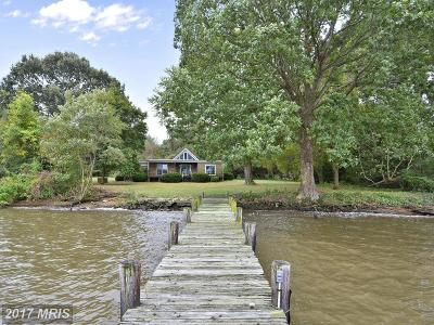 Chestertown Single Family Home For Sale: 209 Rivershore Road