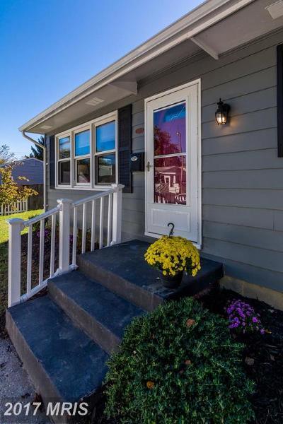 Centreville Single Family Home For Sale: 203 Hillside Drive
