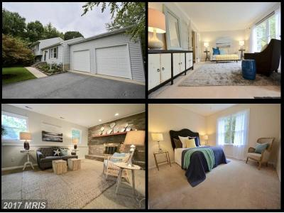 Queen Annes Single Family Home For Sale: 138 Long Point Road