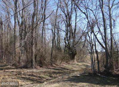 Stevensville Residential Lots & Land For Sale: Bay Drive