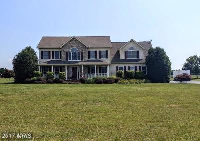 Centreville Single Family Home For Sale: 1000 White Marsh Road