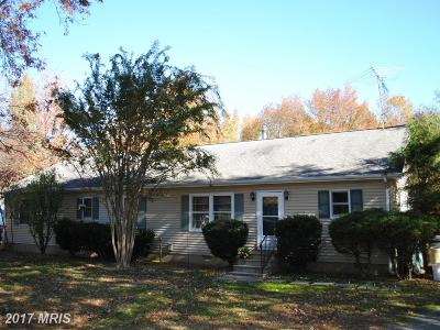 Chestertown Single Family Home For Sale: 225 Burchard Sawmill Road