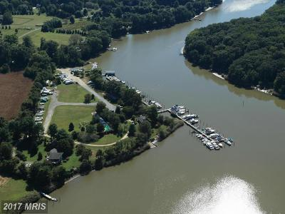 Barclay, Centreville, Chester, Chestertown, Church Hill, Crumpton, Grasonville, Henderson, Ingleside, Marydel, Millington, Price, Queen Anne, Queenstown, Stevensville, Sudlersville, Wye Mills Commercial For Sale: 223 Marina Lane #2