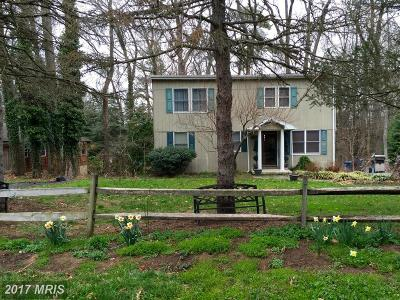 Chestertown Single Family Home For Sale: 602 Rosin Drive