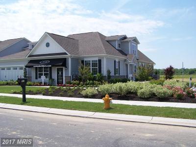 Stevensville Condo For Sale: Moorings Circle
