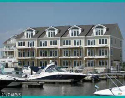 Grasonville Condo For Sale: Channel Marker Way #10