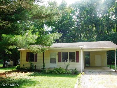 Chestertown Single Family Home For Sale: 126 Parma Road
