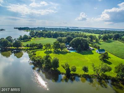 Barclay, Centreville, Chester, Chestertown, Church Hill, Crumpton, Grasonville, Henderson, Ingleside, Marydel, Millington, Price, Queen Anne, Queenstown, Stevensville, Sudlersville, Wye Mills Farm For Sale: 212 Greenwood Hall Farm Lane