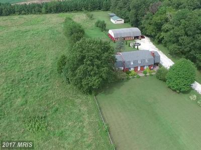 Queen Annes Farm For Sale: 509 Roe Ingleside Road