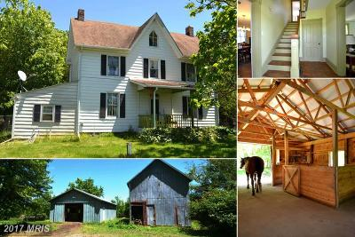 Chestertown Farm For Sale: 1600 Ewingtown Road
