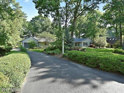 Grasonville Single Family Home For Sale: 5 Prospect Bay Drive W