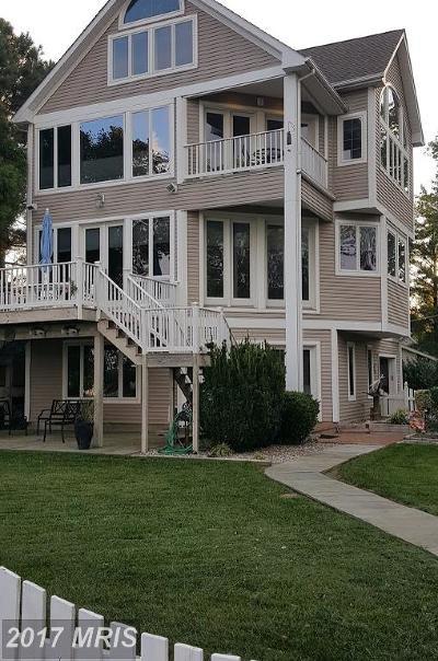 Stevensville Single Family Home For Sale: 3310 Love Point Road