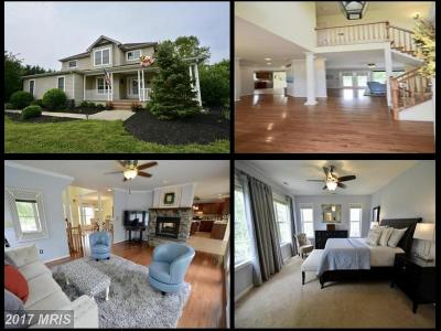 Centreville Single Family Home For Sale: 107 Andrew Court
