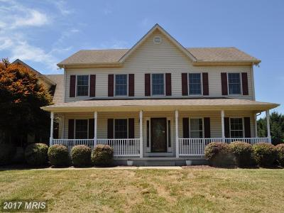 Queen Annes Single Family Home For Sale: 120 Heron View Drive