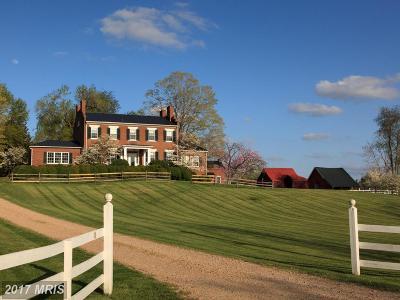 Rappahannock Single Family Home For Sale: 176 Main Street