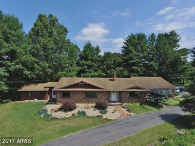 Shenandoah Single Family Home For Sale: 535 Edinburg Gap Road