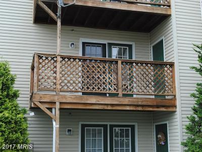 Shenandoah Rental For Rent: 85 Hailey Lane #85 C-5