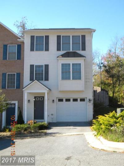 Shenandoah Rental For Rent: 31 Toms Brook Drive