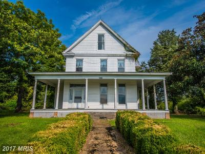 Strasburg Farm For Sale: 29287 Old Valley Pike