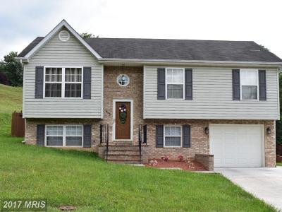 Strasburg Single Family Home For Sale: 450 Fairchild Drive E