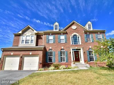 Woodstock Single Family Home For Sale: 424 Stonecrest Drive