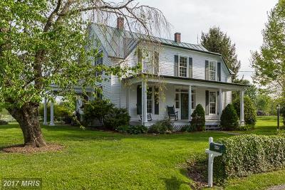 Clarke, Harrisonburg City, Page, Rockingham, Shenandoah, Warren, Winchester City Single Family Home For Sale: 695 Plains Mill Road