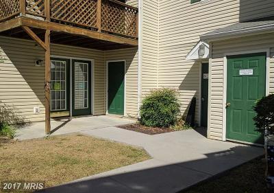 Shenandoah Rental For Rent: 85 Hailey Lane #C-3