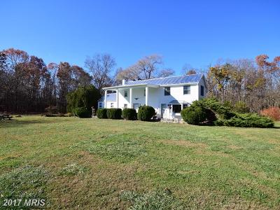 Single Family Home For Sale: 125 Polk Drive
