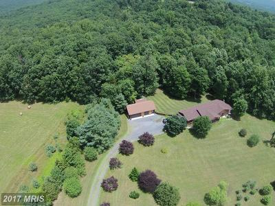 Clarke, Harrisonburg City, Page, Rockingham, Shenandoah, Warren, Winchester City Farm For Sale: 3290 Boliver Road