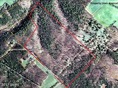 Mount Jackson Residential Lots & Land For Sale: 261 Morning Star Road