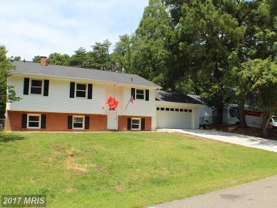 Lexington Park Single Family Home For Sale: 21463 Morris Drive