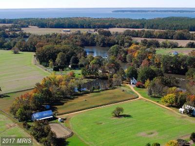 Farm For Sale: 17233 Jutland Drive