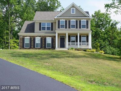 Mechanicsville Single Family Home For Sale: 26266 Tranquility Way
