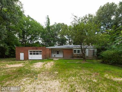 Saint Marys Single Family Home For Sale: 48591 Smith Drive