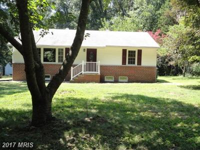 Mechanicsville Single Family Home For Sale: 28335 Old Lockes Hill Road