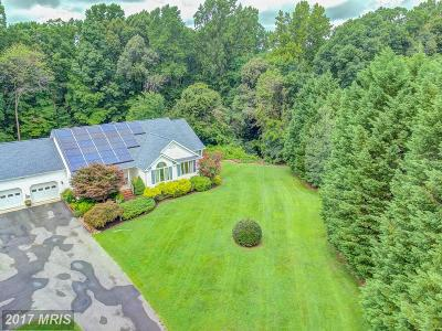 Mechanicsville Single Family Home For Sale: 29191 All Faith Church Road