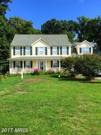 Mechanicsville Single Family Home For Sale: 27280 Asher Lane