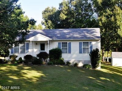 Mechanicsville Single Family Home For Sale: 35580 Army Navy Drive