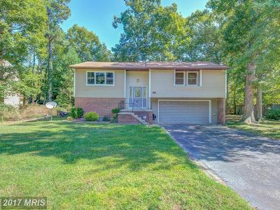 Lexington Park Single Family Home For Sale: 21570 America Street