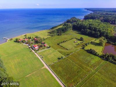 Saint Marys Farm For Sale: 20500 Far Cry Farm Lane