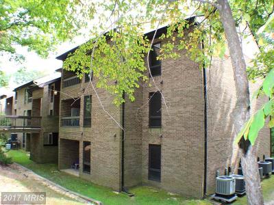 Saint Marys Rental For Rent: 44695 White Oak Court #12C