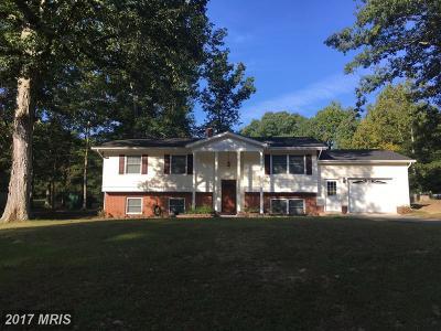 Saint Marys Single Family Home For Sale: 22581 Torino Drive