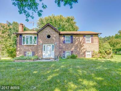 Mechanicsville Single Family Home For Sale: 27122 Baptist Church Road
