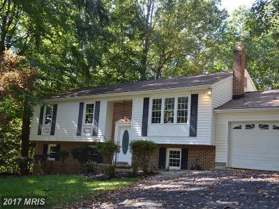 Mechanicsville Single Family Home For Sale: 26993 Bosse Drive