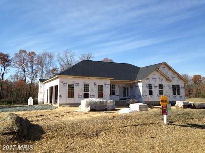 Mechanicsville Single Family Home For Sale: 40331 Festoon Court