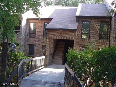 Rental For Rent: 44691 White Oak Court #506